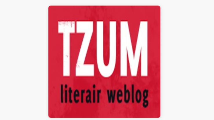 Tzum literair recensie over Holland (Rodaan al Galidi)